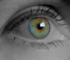 oeil - flickr